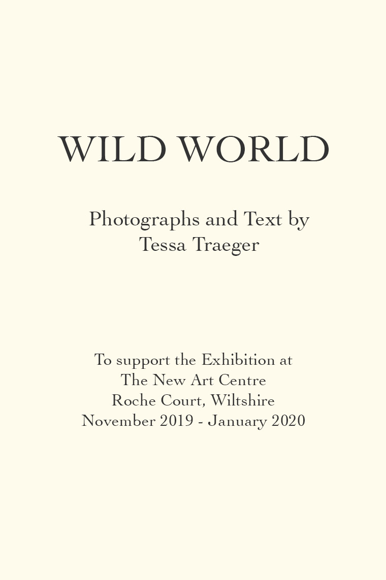 artist_book_wild_world